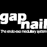 The GAP NailTM Endo-Exo Medullary System